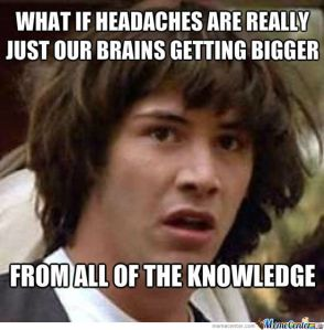 Brain's too big for my head!